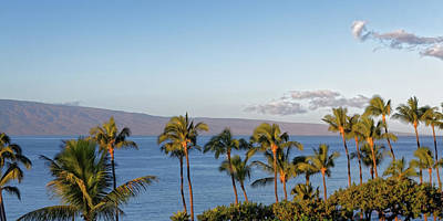 Poster featuring the photograph Maui Palms by Lars Lentz