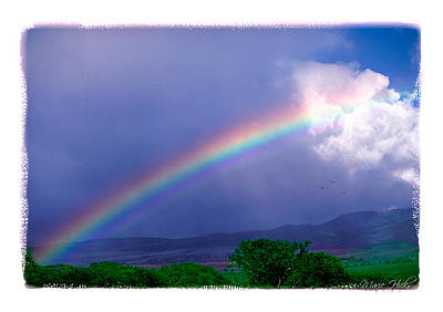 Poster featuring the photograph Maui Rainbow by Marie Hicks