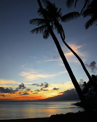 Maui Sunset With Palm Trees Poster