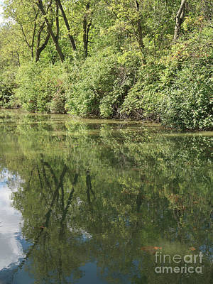 Maumee And Erie Canal Reflected Poster