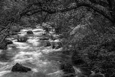 Mcarthur-burney Falls Creek Black And White Poster