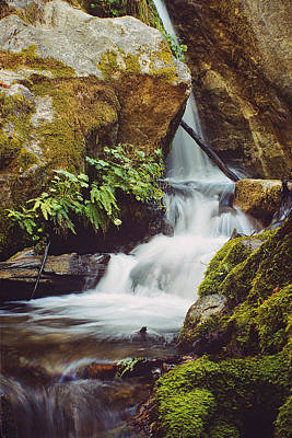 Poster featuring the photograph Mcway Creek Falls 1 by Gary Brandes