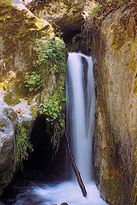 Poster featuring the photograph Mcway Creek Falls 2 by Gary Brandes
