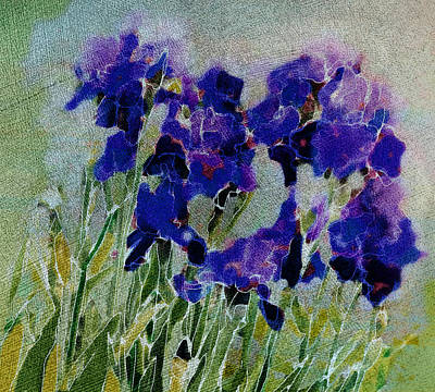 Meadow Iris Poster by Linde Townsend
