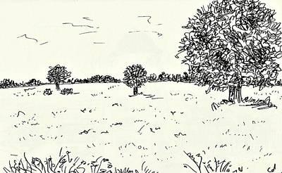 Meadow Near Woerlitz Poster