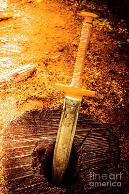 Medieval Training Sword Poster by Jorgo Photography - Wall Art Gallery