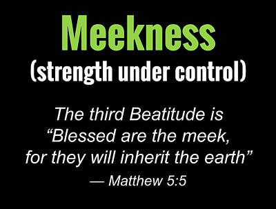 Meekness Poster