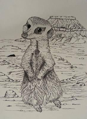 Meerkat Curiosity Poster