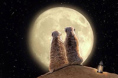 Poster featuring the digital art Meerkat Moon by Nicole Wilde
