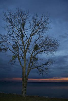 Meet Me Under The  Mistletoe Poster by Skip Willits