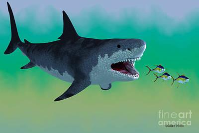 Megalodon Shark Attack Poster