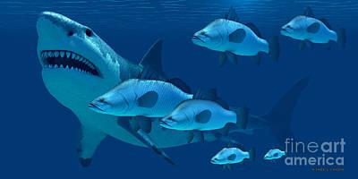 Megalodon Shark Poster