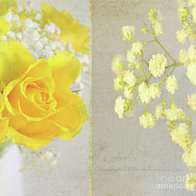 Poster featuring the photograph Mellow Yellow by Lyn Randle