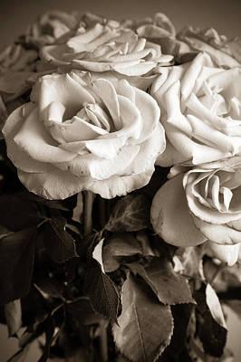 Memorial Roses Poster