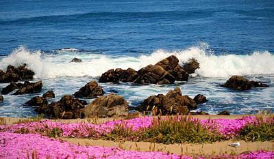 Memories Of Monterey Bay Poster