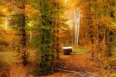 Memories Of Seasons Past  Poster by John Poon