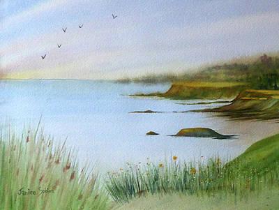 Mendocino Headlands Poster by Janice Sobien