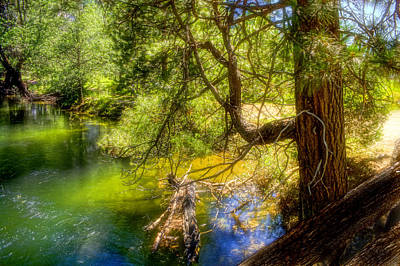 Poster featuring the photograph Merced River2 by Michael Cleere