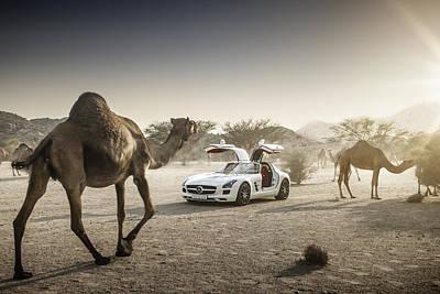 Mercedes Benz Sls Amg Camels Poster