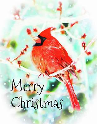 Merry Christmas Cardinal Poster