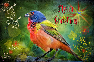 Merry Christmas Painted Bunting Poster
