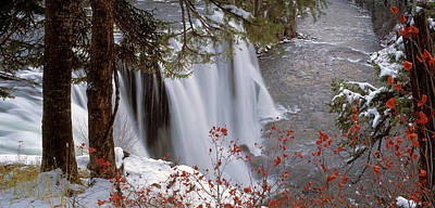 Mesa Falls Winter Poster by Leland D Howard