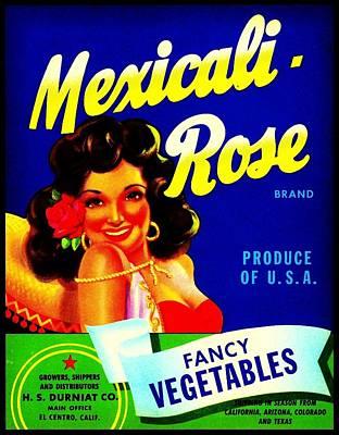 Mexicali Rose Vintage Vegetable Crate Label Poster by Peter Gumaer Ogden