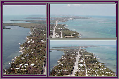 Miami Heat Located 90 Miles South Of Miami On The Island Chain Of Islamorada Poster by Navin Joshi