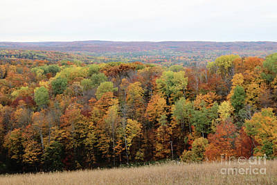 Michigan Autumn Poster