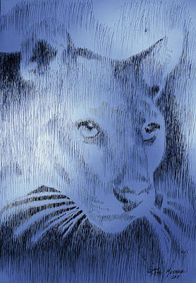 Midnight Blue Poster by Robbi  Musser