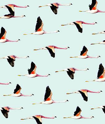 Migration Poster by Uma Gokhale