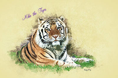 Mike The Tiger Poster by Mindy Guidry