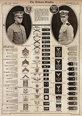 Poster featuring the photograph Military Rank Identification 1917 by Daniel Hagerman