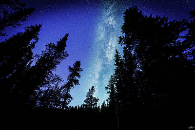 Milky Way Among The Trees Poster