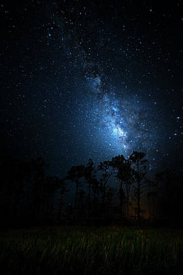 Poster featuring the photograph Milky Way At Big Cypress National Preserve by Mark Andrew Thomas