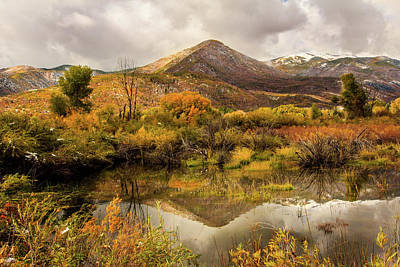 Mill Canyon Peak Reflections Poster by TL Mair