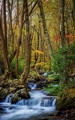 Mill Creek In Fall #1 Poster