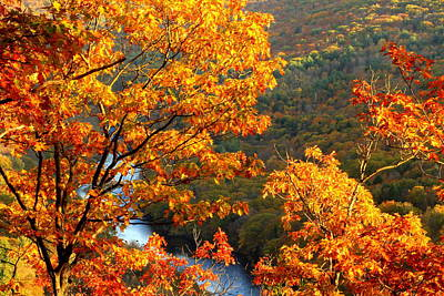 Millers River Foliage Poster