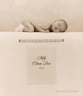 Milly Olivia Rose Poster by Anne Geddes