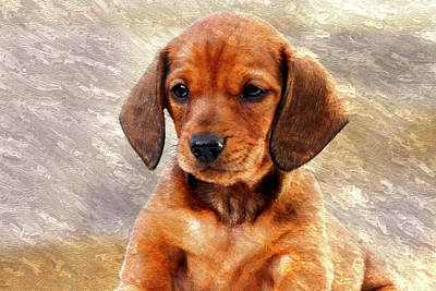 Mini Dachsund Dog Oil Painting Poster