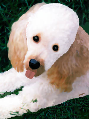 Poster featuring the photograph Miniature Poodle Albie by Marian Cates