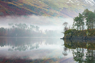 Mist Covered Pines - Thirlmere Poster by Tony Higginson