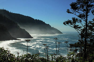 Misty Coast At Heceta Head Poster