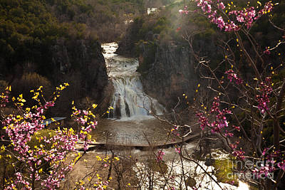 Misty Day In Turner Falls Poster