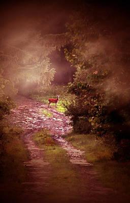 Misty Deer Poster