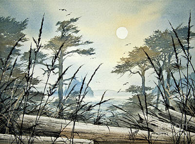 Misty Island Dawn Poster by James Williamson