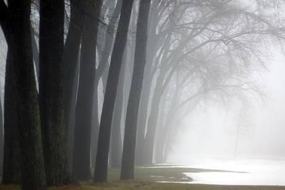 Misty Moments Poster by Linda Mishler