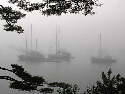 Misty Morning At Northeast Harbor Poster