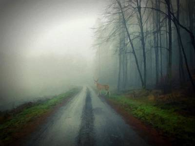 Poster featuring the photograph Misty Morning Deer by David Dehner