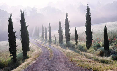 Misty Morning In Tuscany Poster by Marion McCristall